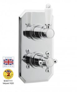 Dual Concealed Thermostatic Shower Valve